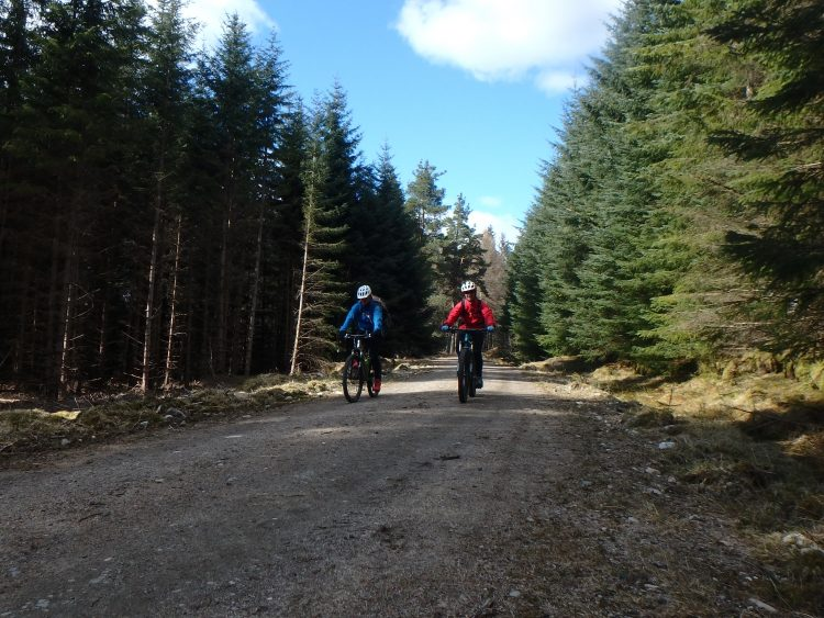 Mountain Biking through Leanachan Forest